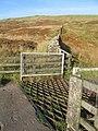 Fairlie Moor Cattle Grid - geograph.org.uk - 581728.jpg