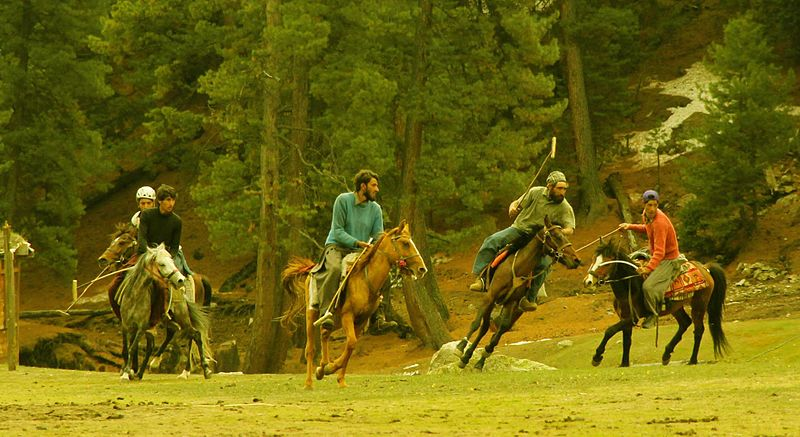 ਤਸਵੀਰ:Fairy meadows polo match.jpg