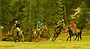 Fairy meadows polo match.jpg