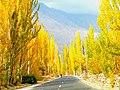 Fall in Hunza-basraa-4.jpg