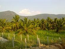 Dharmapuri district - Wikipedia