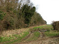 Farmtrack beside Long Plantation - geograph.org.uk - 671444.jpg