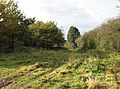 Farmtrack leading northeast - geograph.org.uk - 1031050.jpg