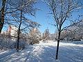 Fennpfuhlpark Winter Januar 09 50.JPG