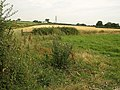 Fields near Teignbridge Gate - geograph.org.uk - 995362.jpg