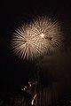 Fireworks - July 4, 2010 (4773118747).jpg