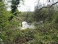 Fishpond at Battlefield Church - geograph.org.uk - 1826384.jpg