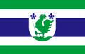 Flag of Polva.png