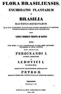 Flora Brasiliensi Title page.jpg
