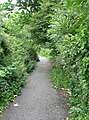 Footpath - Huddersfield Road on right - geograph.org.uk - 907349.jpg