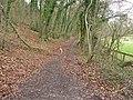 Footpath at the bottom of Selborne Hanger - geograph.org.uk - 1802807.jpg