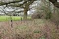 Footpath from Sandown Farm to Stock Lane, Landford - geograph.org.uk - 738888.jpg