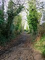 Footpath from the end of Cleeve Lane, Ross-on-Wye - geograph.org.uk - 1133144.jpg