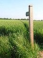 Footpath near Edwardstone - geograph.org.uk - 185483.jpg