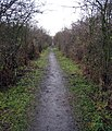 Footpath on the old railway track to Ponteland - geograph.org.uk - 88941.jpg