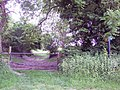 Footpath to Knighton - geograph.org.uk - 467991.jpg