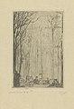 Forest at Groenendael, print by James Ensor, 1888, Prints Department, Royal Library of Belgium, S. II 63756.jpg