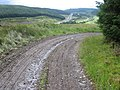 Forest track near Greskine - geograph.org.uk - 494769.jpg