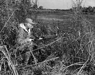 Dazzy Vance - Vance duck hunting in Crystal River, Florida, January 1952
