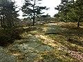 Fornborgen i Ruddalen (Raä-nr Västra Frölunda 119-1) 2425.jpg