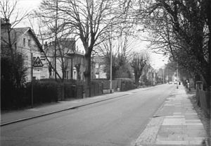 Fortis Green - Fortis Green in 1973, looking west towards East Finchley