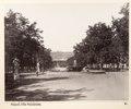Fotografi från Neapel - Hallwylska museet - 104153.tif