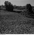 Fotothek df ps 0001450 Landschaften ^ Insellandschaften.jpg