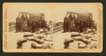 Fourteen thousand feet above the sea, Pike's Peak, Colorado, U.S.A, from Robert N. Dennis collection of stereoscopic views 3.png