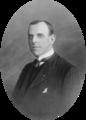 Francisco Tavares Proença Júnior (mono crop).png