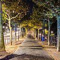 Frankfurt bei Nacht 013.jpg