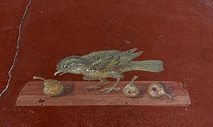 image of Fresco bird figs Villa Poppaea Oplontis Italy