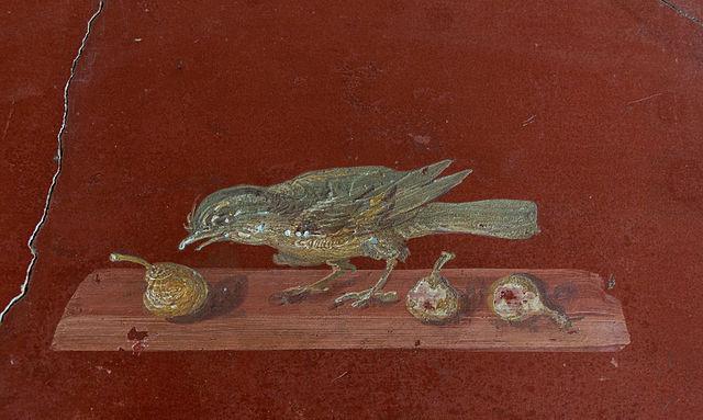 https://upload.wikimedia.org/wikipedia/commons/thumb/a/a9/Fresco_bird_figs_Villa_Poppaea_Oplontis_Italy.jpg/640px-Fresco_bird_figs_Villa_Poppaea_Oplontis_Italy.jpg