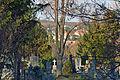 Friedhofsblick.jpg