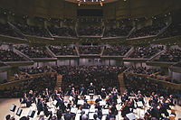 Full orchestra small.jpg