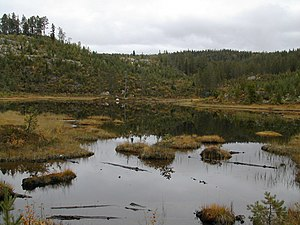 Fyresdal - Small lake in Fyresdal