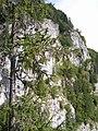 Galbina-kőköz - panoramio.jpg