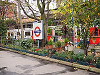 The garden on the above-ground platforms at South Kensington tube station in London