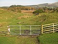 Gate and Track, Muir Plantation. - geograph.org.uk - 269098.jpg