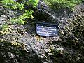 Gedenktafel Salzmann beim Triefstein (Luisenthal).JPG