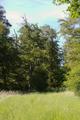 Gemuenden Ehringshausen Feldatal Felda damaged deciduous tree f.png