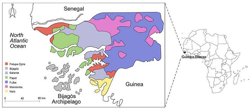 Geographic location of Guinea-Bissau and present-day settlement pattern of the ethnic groups