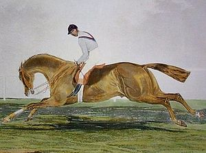 George Frederick (horse) - George Frederick, painting by an unknown artist.
