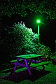 George and Dragon beer garden, Dragons Green, Shipley, West Sussex 1.jpg