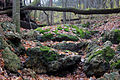 Gfp-wisconsin-blue-mound-state-park-bridge-over-streambed.jpg