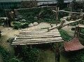 Giant Panda Conservation Centre in Zoo Negara Malaysia 2021 (19).jpg