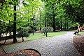 Giardini pubblici - Parco Ca'Diedo.jpg