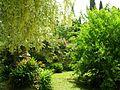 Giardino di Ninfa 24.jpg
