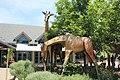 Giraffe Statutes Denver Zoo.jpg