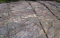 Glacially eroded jaspilite banded iron formation outcrop (Soudan Iron-Formation, Neoarchean, ~2.69 Ga; Stuntz Bay Road outcrop, Soudan Underground State Park, Soudan, Minnesota, USA) 2 (19224597835).jpg