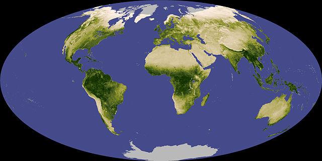 MODIS NDVI, 2007